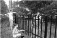 black and white image of kids painting fence